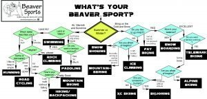 Whats your Beaver Sport Decision Tree